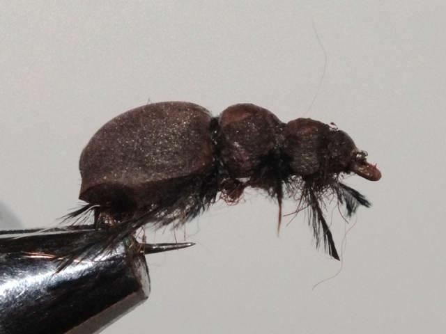 Как связать жука для голавля