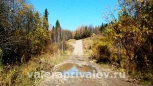 Дорога Кормовище - Устье Койва